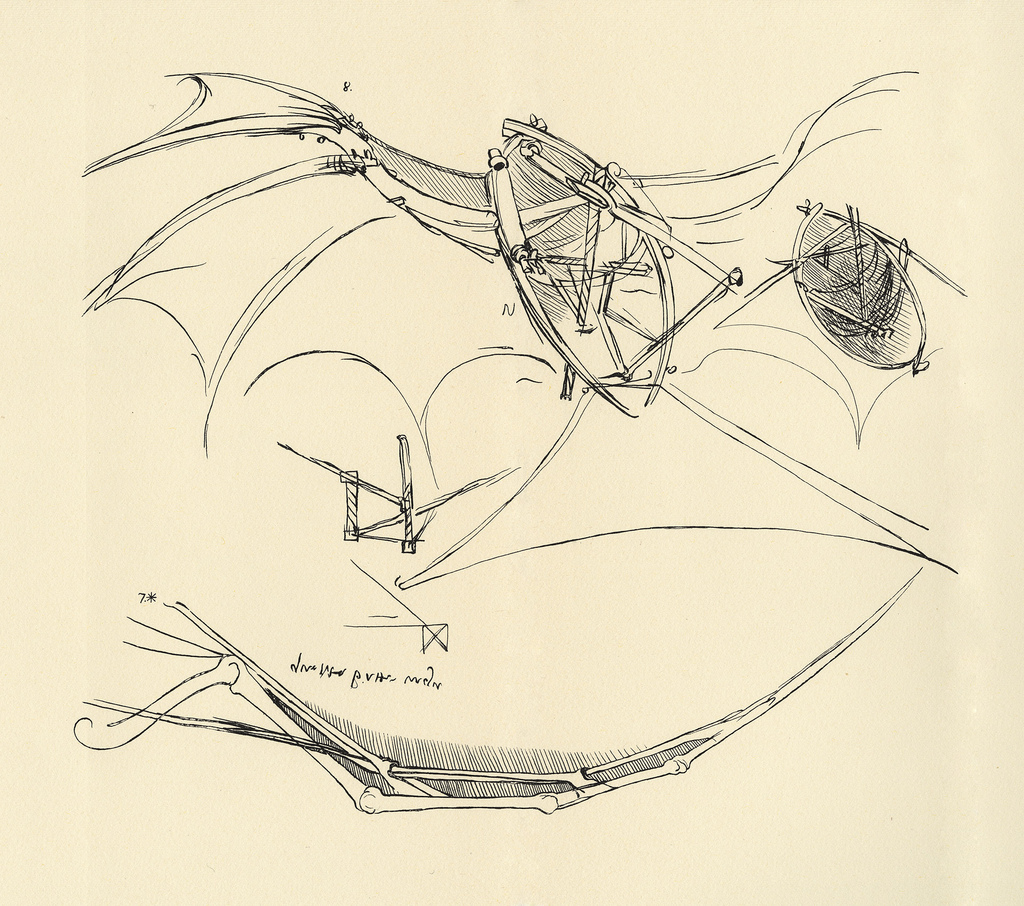 Leonardo da Vinci: Diagram of a proposed flying machine (1789)